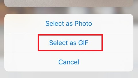 send live photo as GIF in whatsapp on iPhone